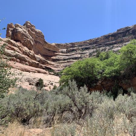 Tributary Valley in Grand Gulch Canyon, Cedar Mesa